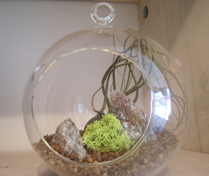 simple terrarium